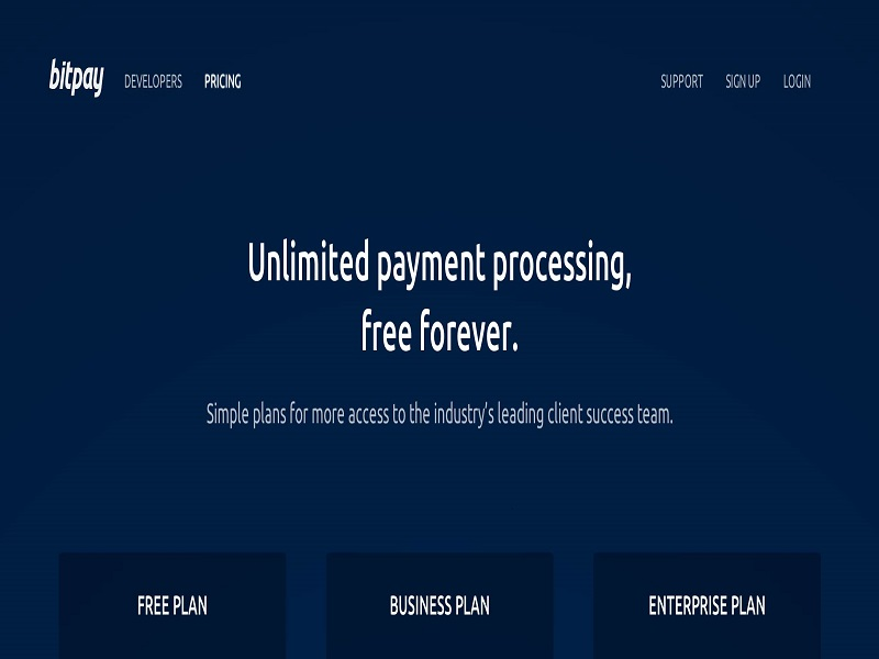 bitpay-free-processing