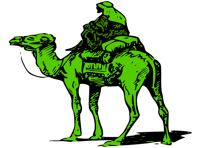 Silk-Road-Marketplace-Camel (1)