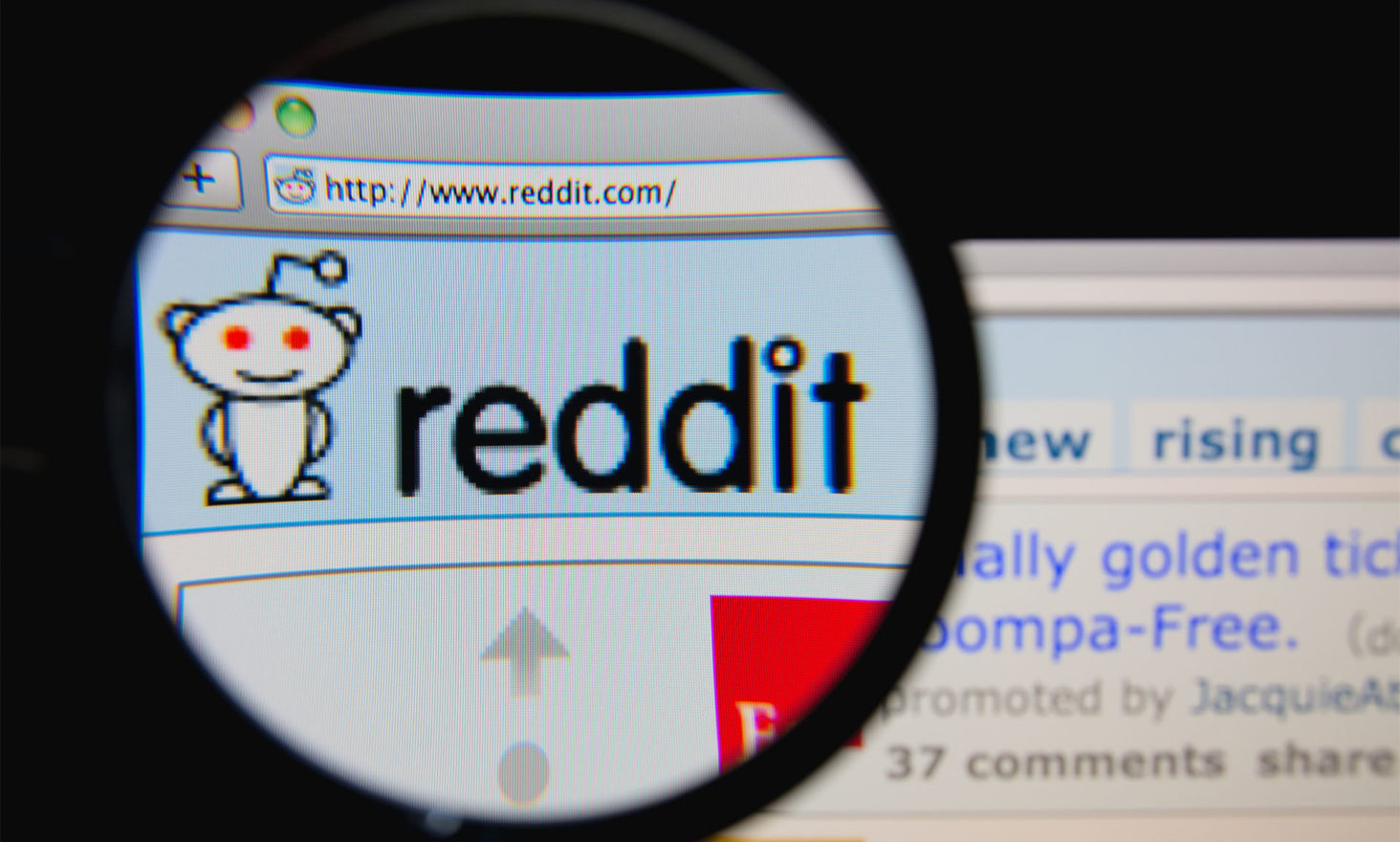 Highschool Dropout and Bitcoin Millionaire Hosts Reddit AMA