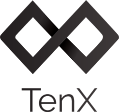 How TenX Works