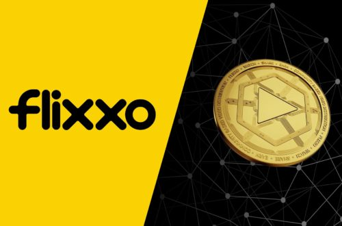 Flixxo vs YouTube: The David and Goliath of Video Sharing Platforms