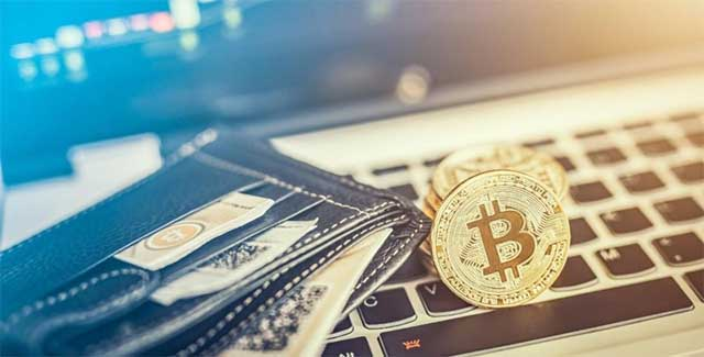 Cryptocurrency Wallet: The What and The How
