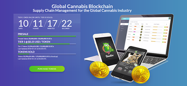 The Budbo Token Crowdsale and BUBO Tokens