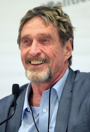 Bitcoin Price Analysis: Will John McAfee's Prediction Hold True?