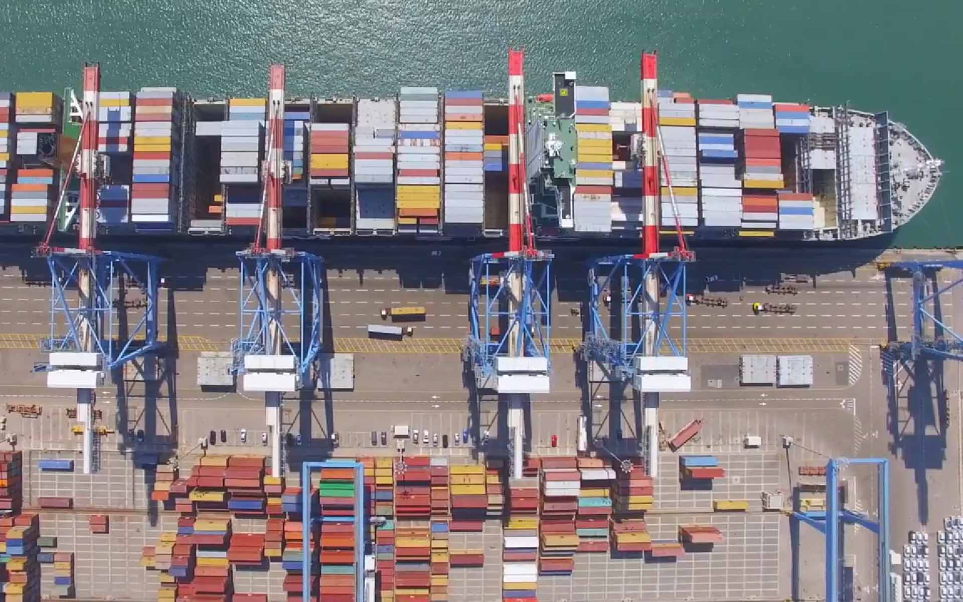 First View of Blockshipping's Global Shared Container Platform