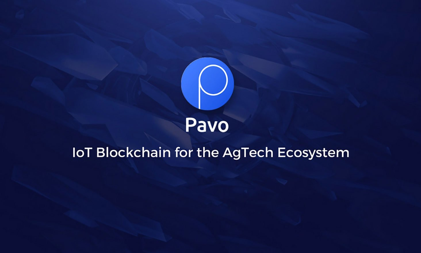 Pavo Performs Ongoing California Installations of Their IoT Blockchain Solution for Agriculture