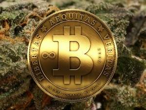 Cannabis Executive Doesn't Understand Bitcoin
