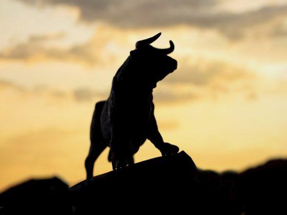 Bull Market Bitcoin Price