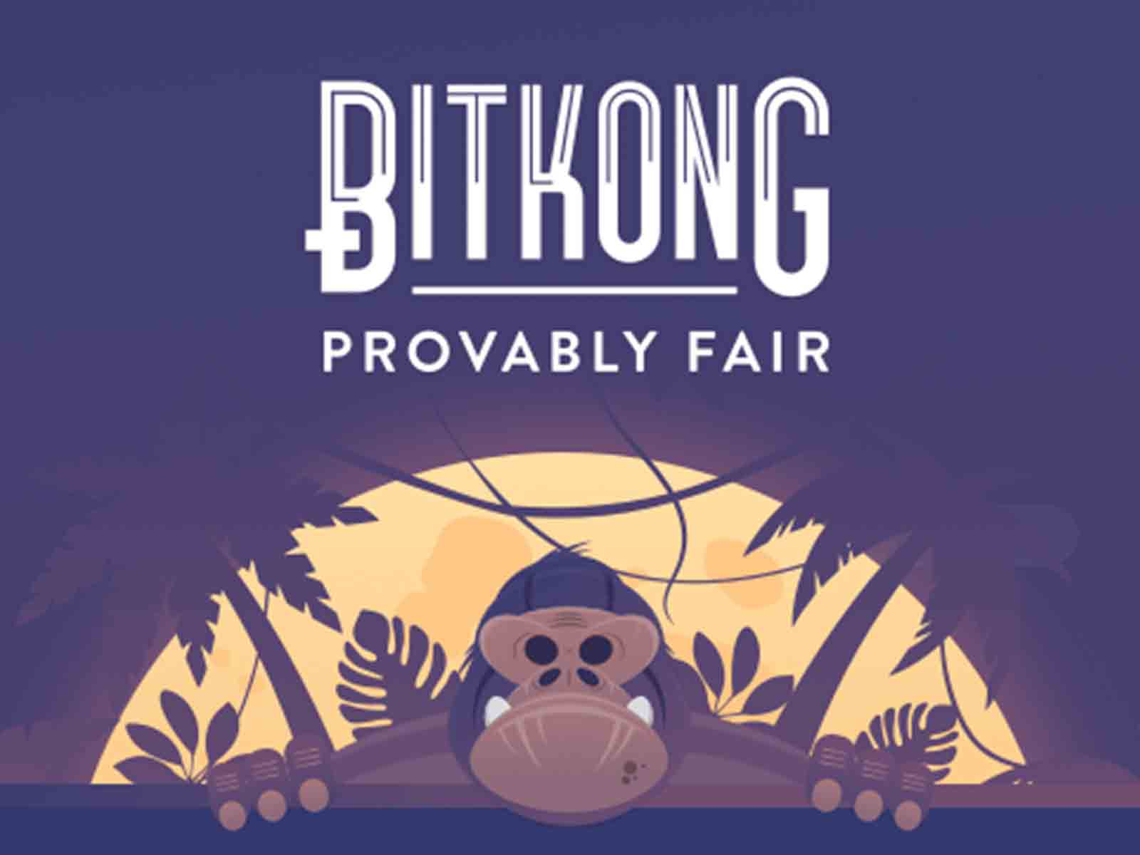 bitkong