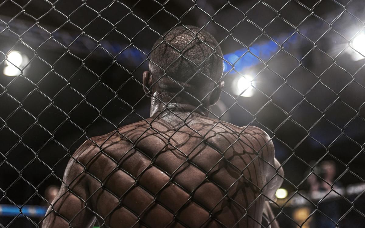 Bet Bitcoin, UFC