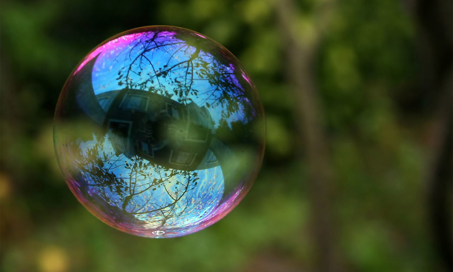 cryptocurrency bubble
