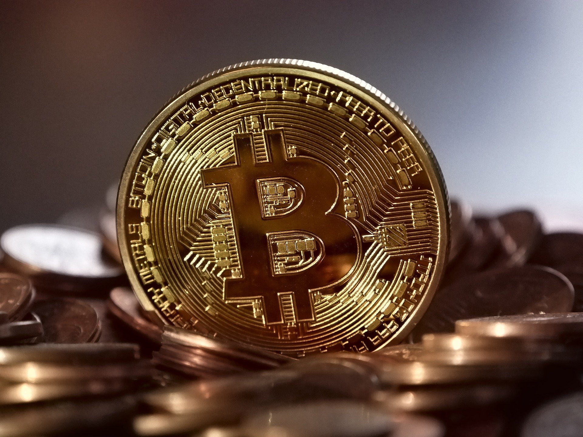 2017: the Year of the Bitcoin