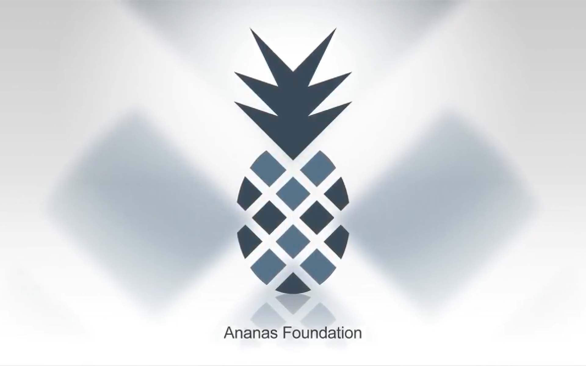 Ananas Foundation Building Knowledge Graphs of Belief Systems Within the Blockchain