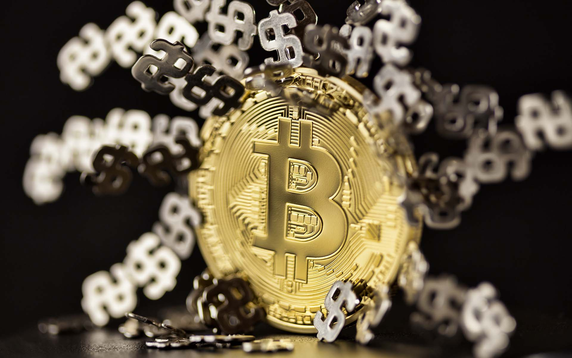 rich off bitcoin