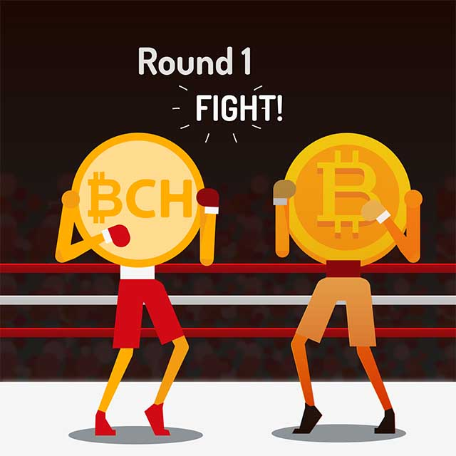 A Tale of Two Bitcoins