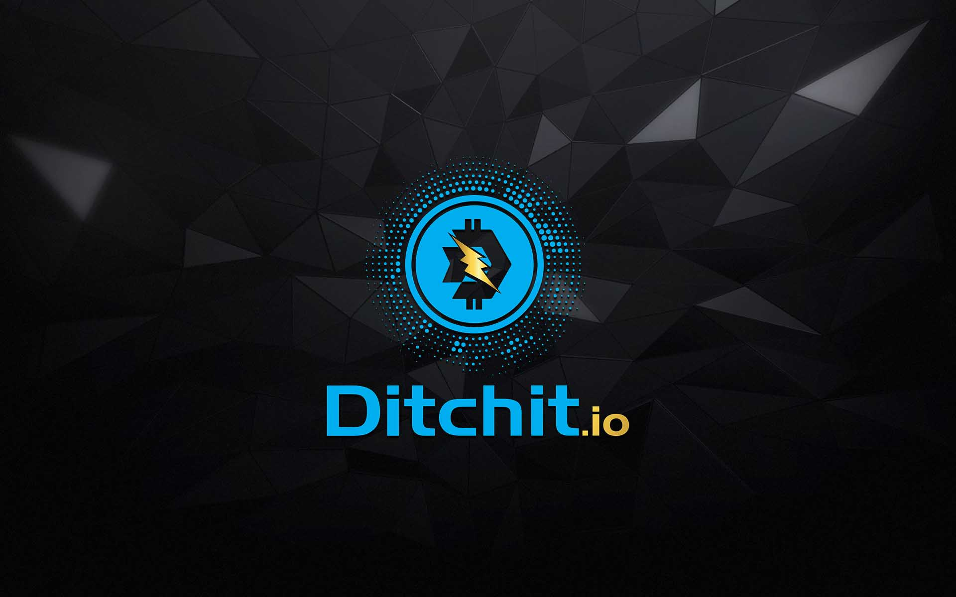 The Ditch-It App Launches ICO & Allows People To Turn Every Day Clutter Into Serious Cryptocurrency