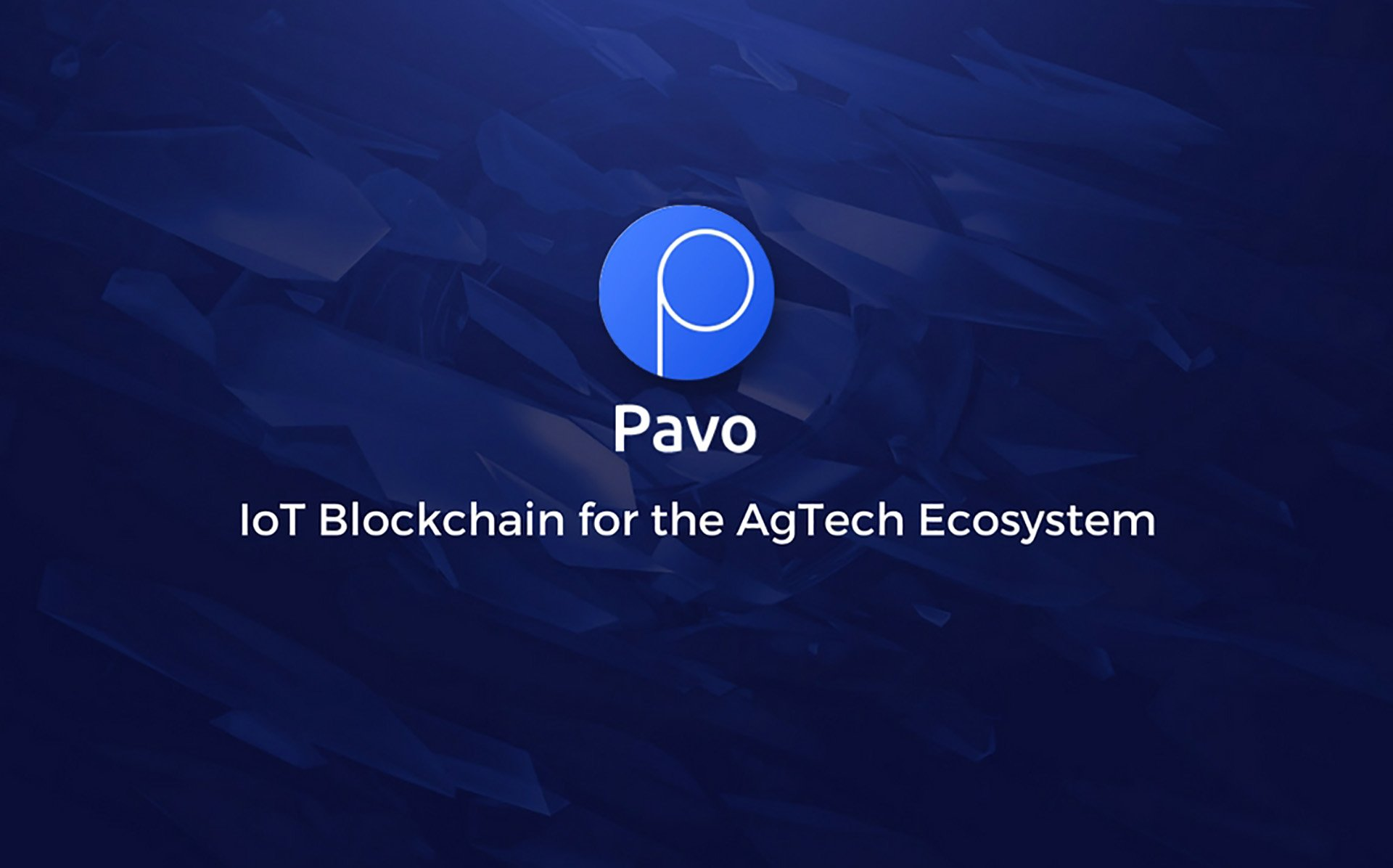 Prominent Blockchain Expert and Entrepreneur Keith Teare Joins Pavo's Advisory Board