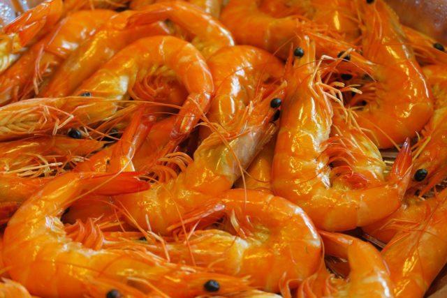 Ether Shrimp