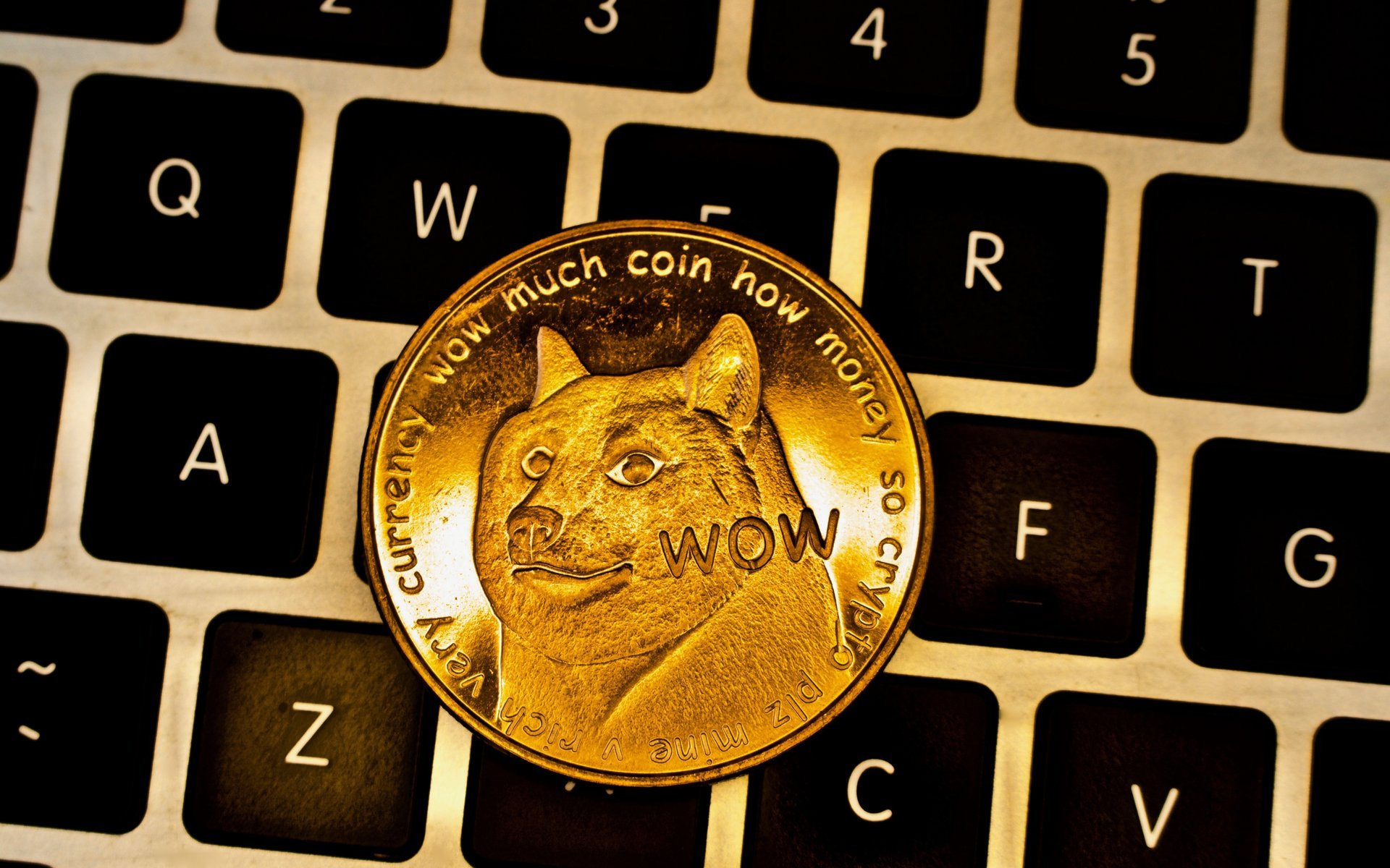 Image result for dogecoin