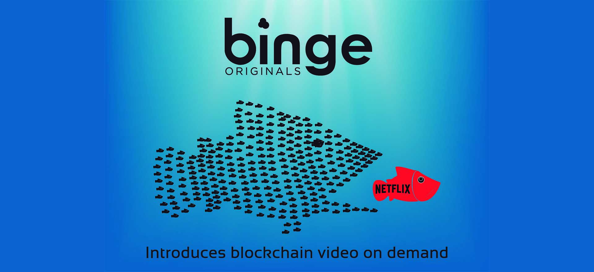 Slate's 'Binge' Blockchain Streaming Platform vs. Netflix