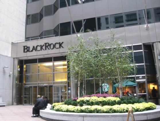 Bitcoin Price Jumps as World's Biggest ETF Provider BlackRock Looks to Get Involved