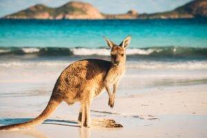 Australia bitcoin taxes