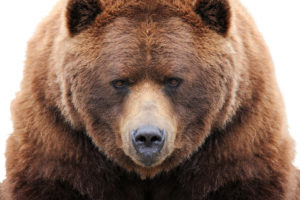 Bakkt Binance Bearish