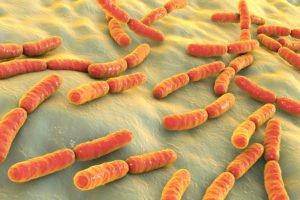 Bacteria Bio May Help Account for Bitcoin Movements