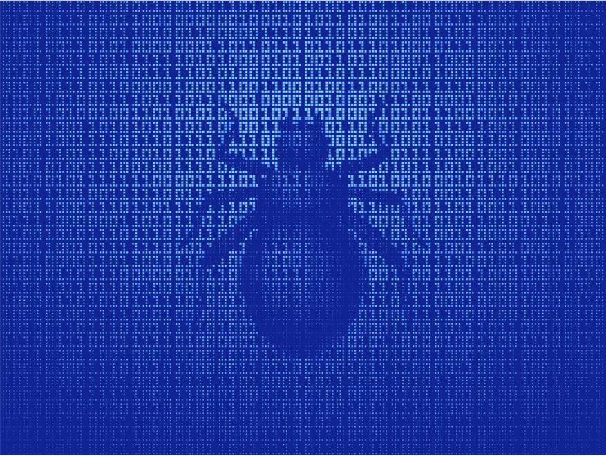 Bitcoin bug