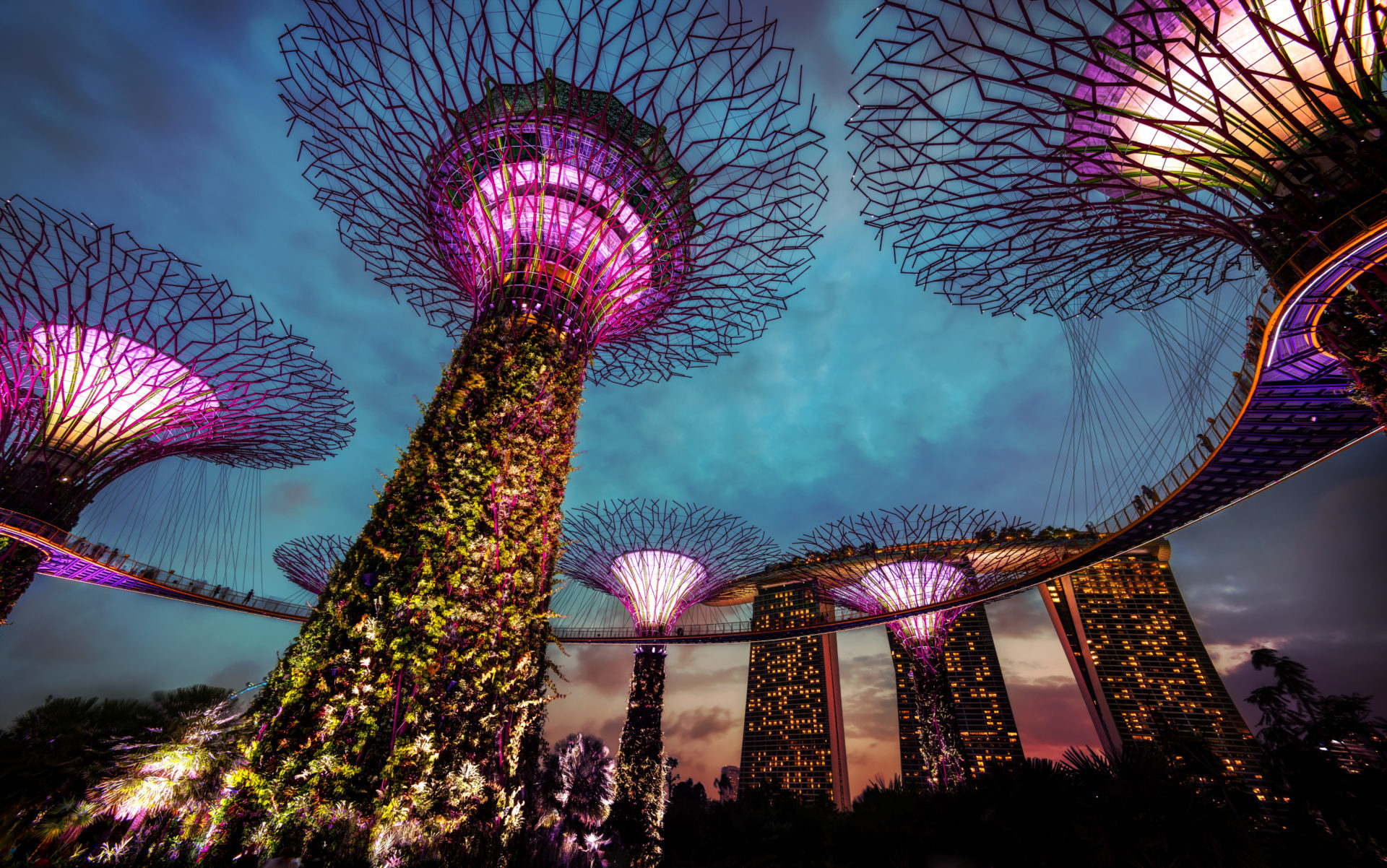 Singapore could embrace bitcoin first