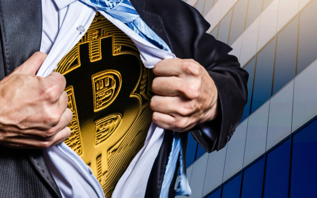 The 'Hodlers of Last Resort' Saviors of Bitcoin