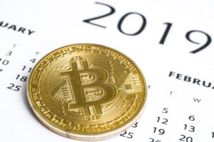 new year 2019 bitcoin icos crypto bull