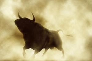Bitcoin bull bullish
