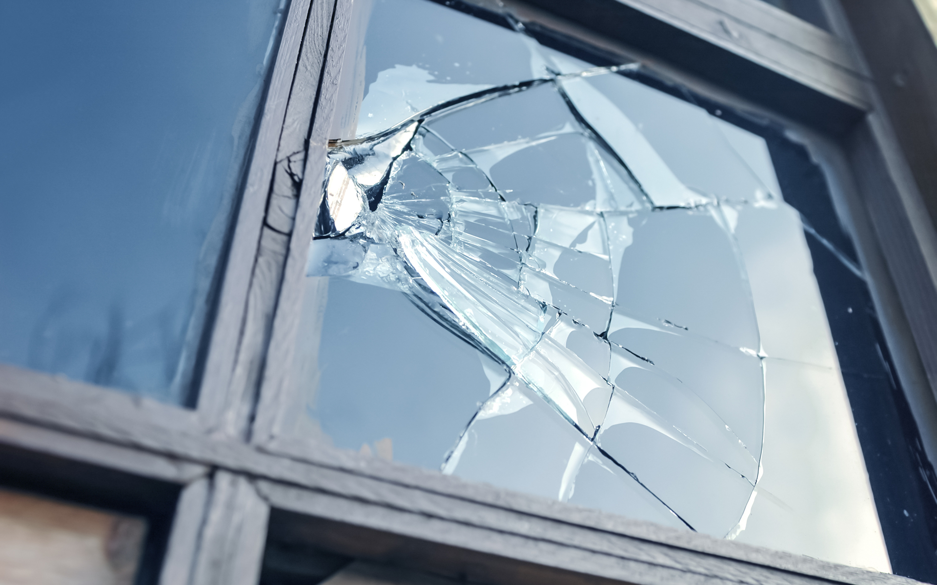 broken window hack cryptopia