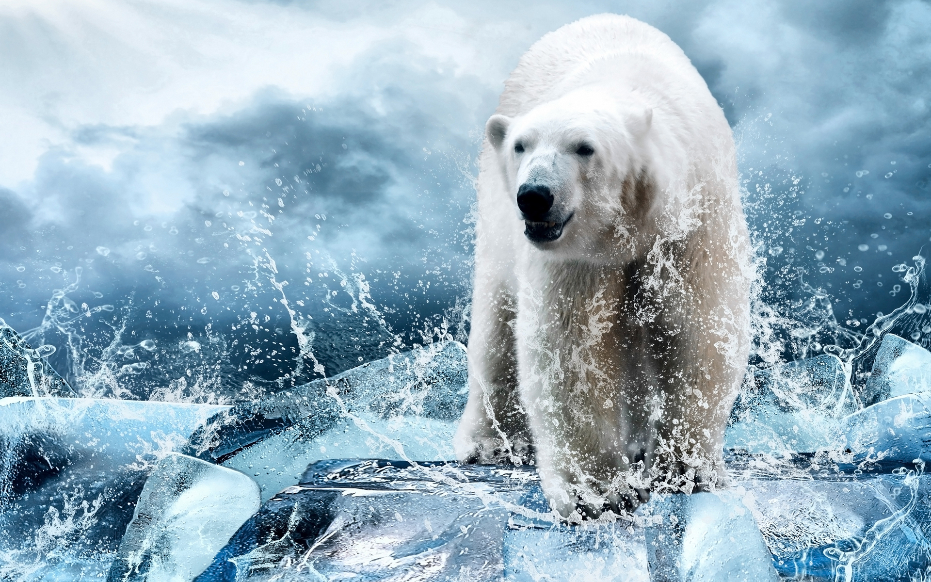 bear bearish ethereum price