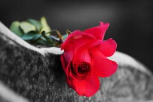 bitcoin obituaries lightning network flowers graveyard