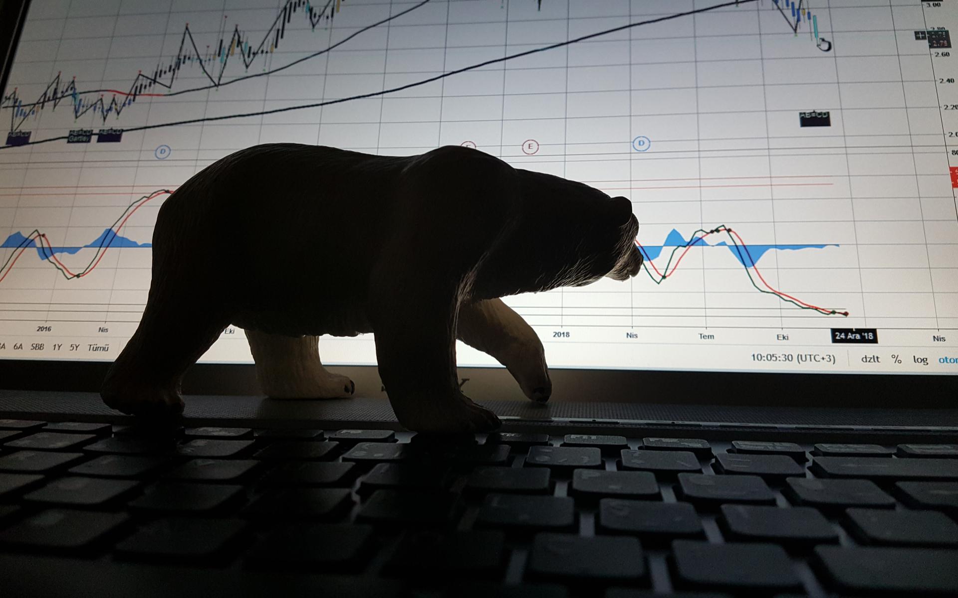 bitcoin price bear
