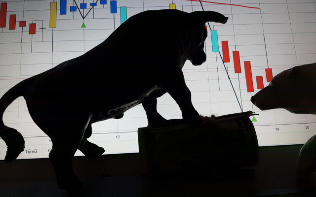 bull bitcoin price