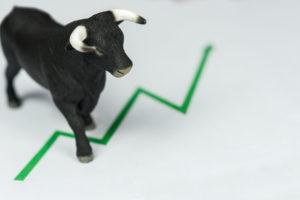 bitcoin bull price