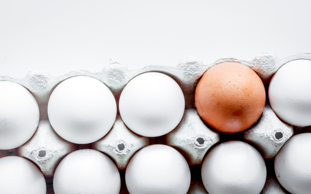 bitcoin altcoins diversify portfolio eggs