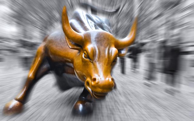 bull bitcoin