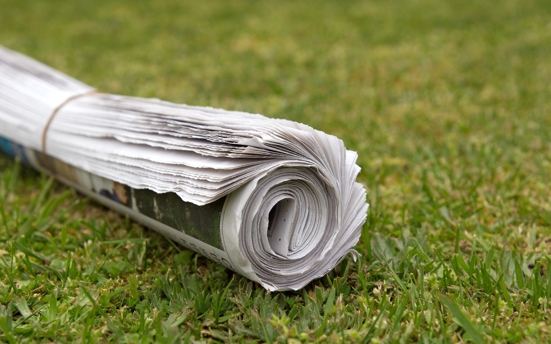 newspaper news bitcoin