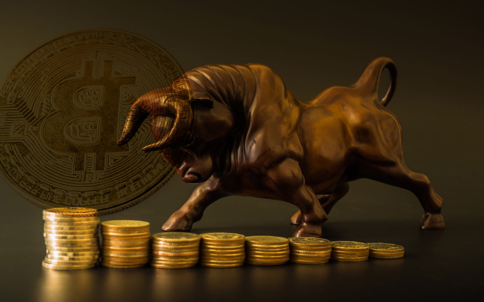 Bitcoin Price Set For $100,000, Altcoins Unlikely to Rally: Binance <bold>CSO</bold>