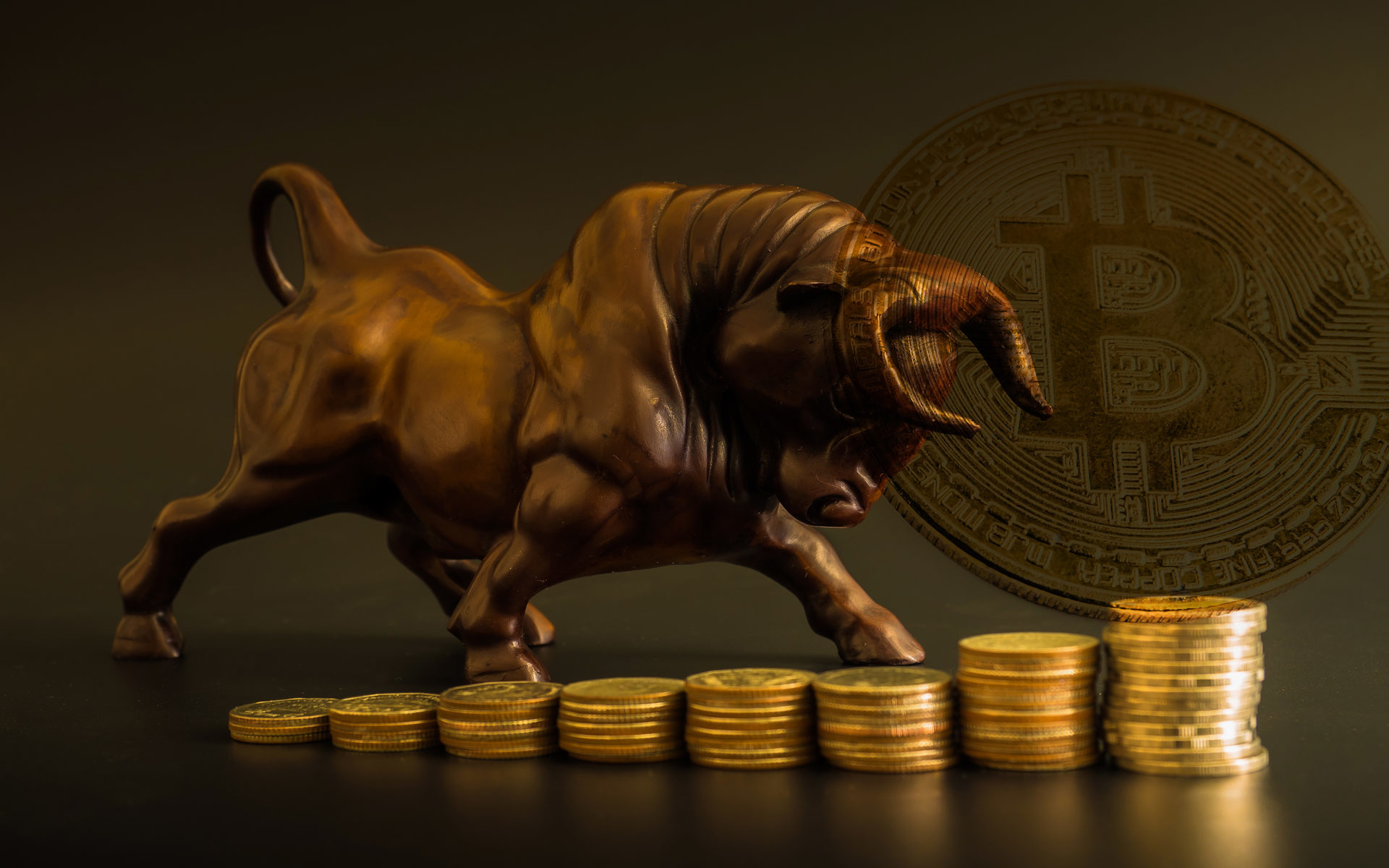 Bitcoin price bull run