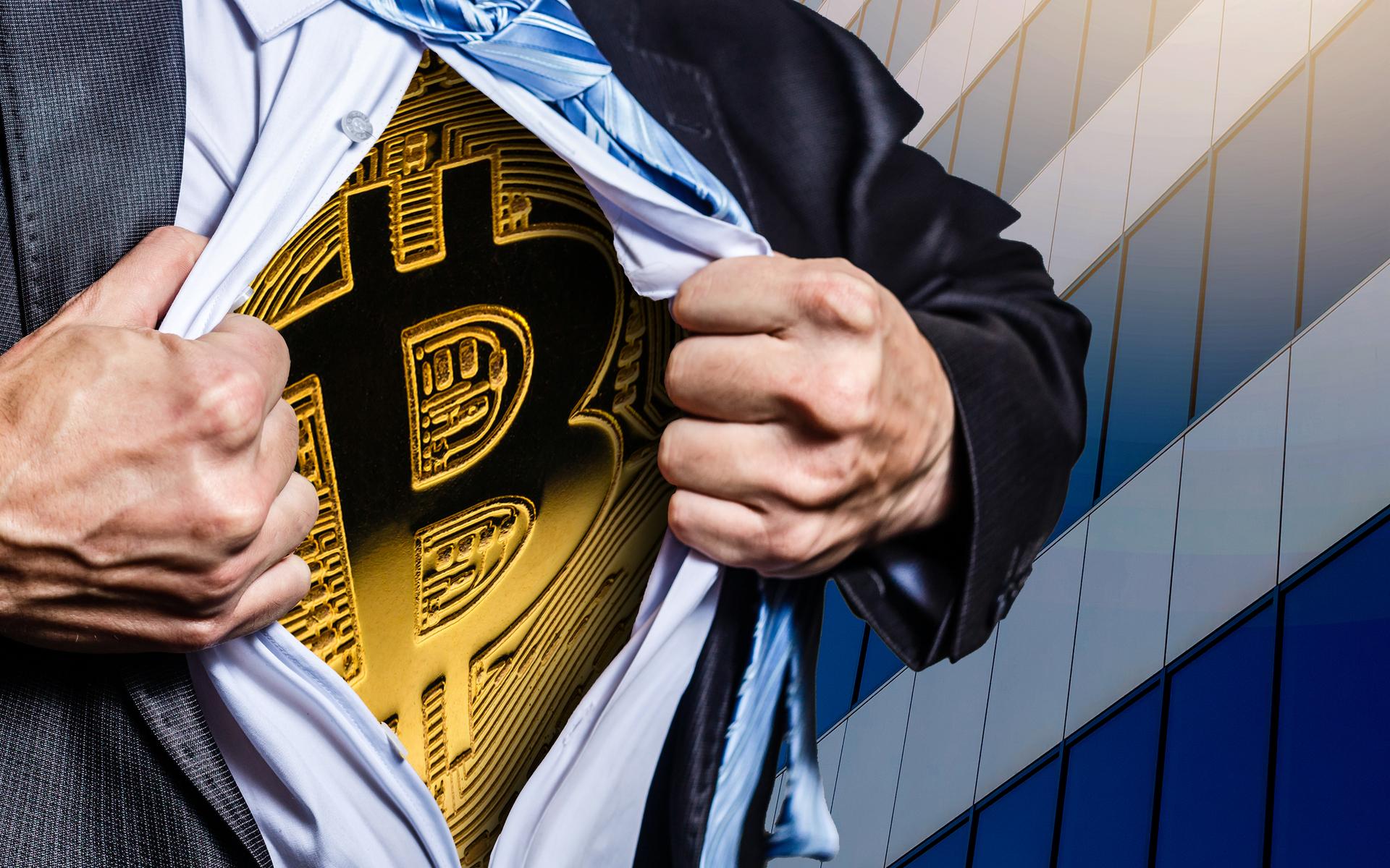 Bitcoin is king