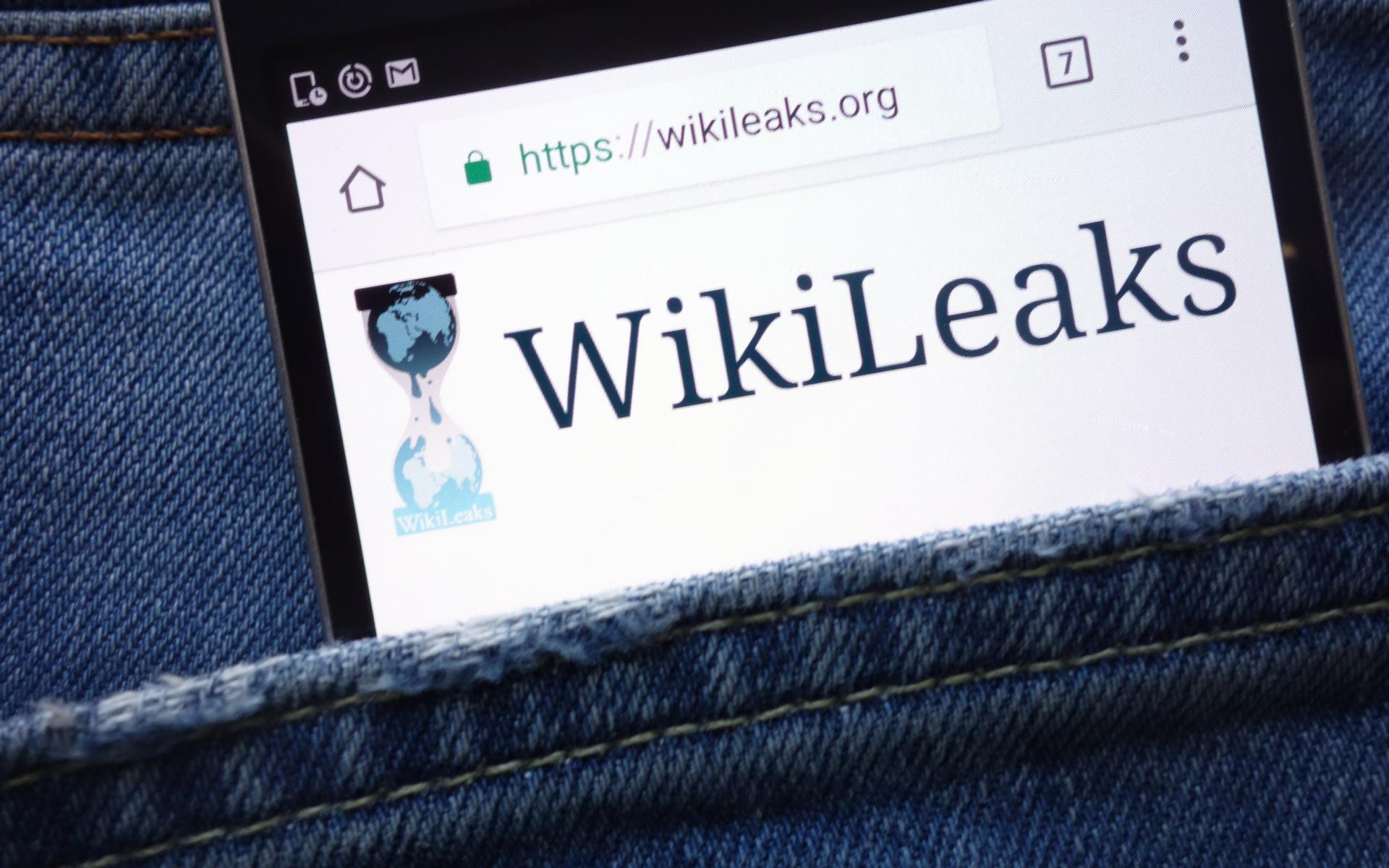WikiLeaks Bitcoin donations