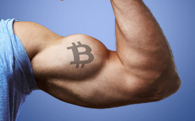 strong bitcoin miner bull price