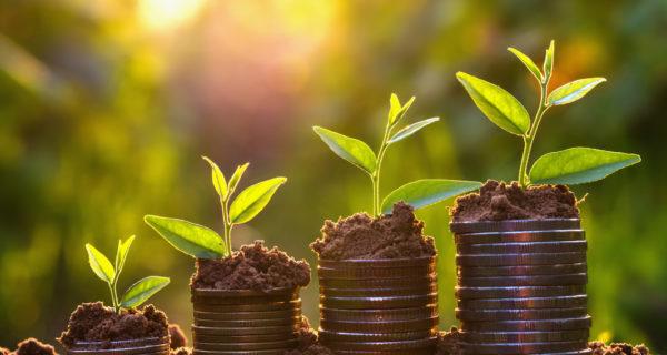 Crypto price profit investment