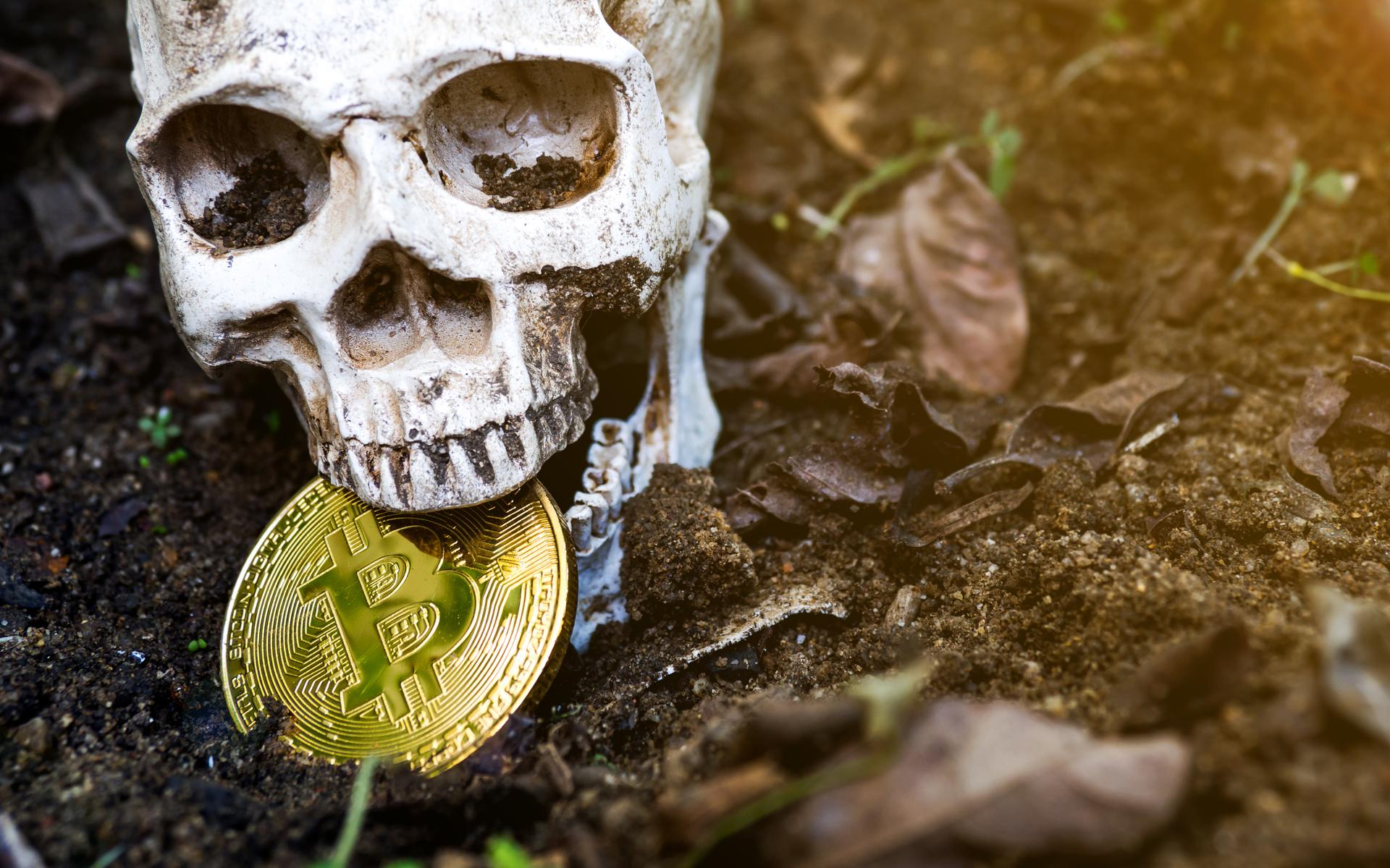 Skull biting bitcoin Korean trader