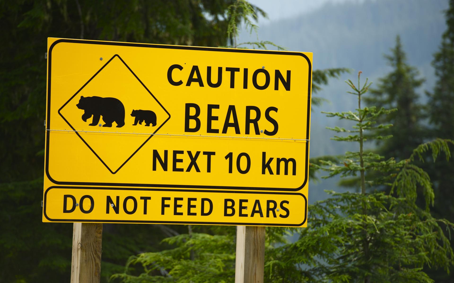 Crypto market primed for bearish Q4